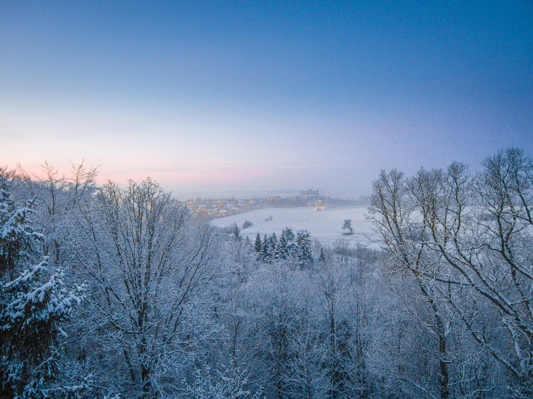 Neustad_winter_DentalConsulting_1_WEB